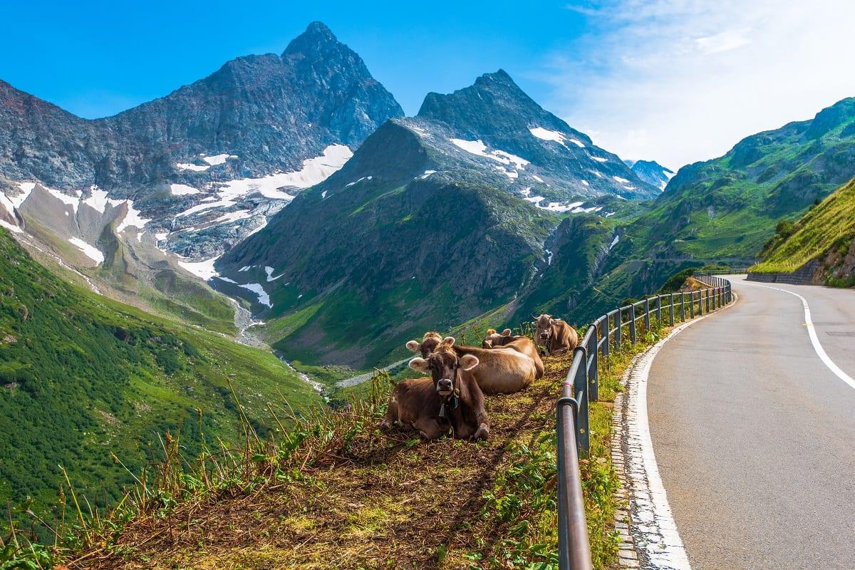 Swiss mountain road